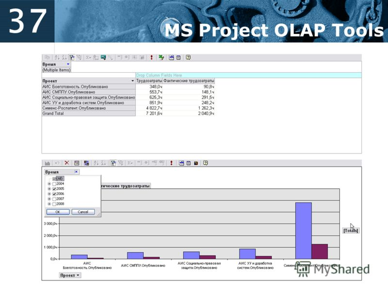 37 MS Project OLAP Tools