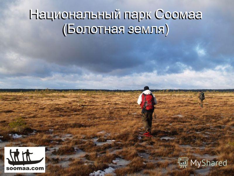 Национальный парк Соомаа (Болотная земля)