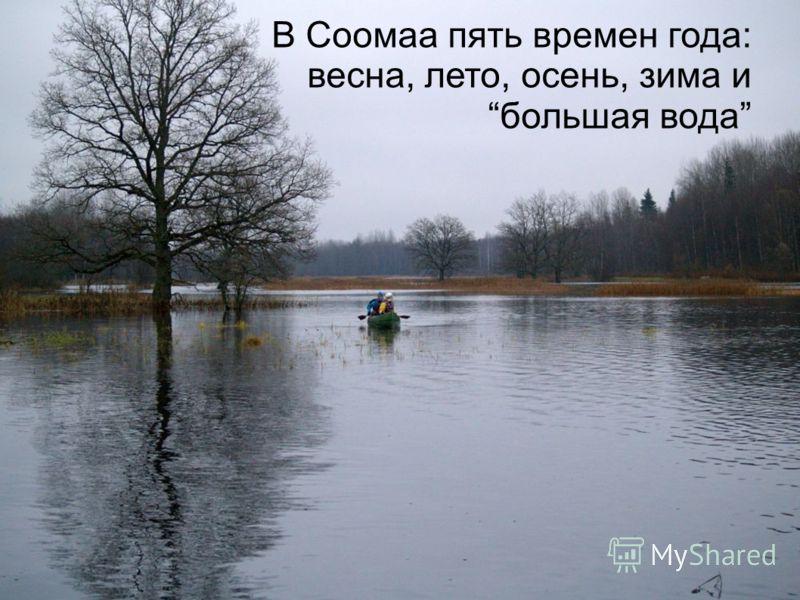В Соомаа пять времен года: весна, лето, осень, зима и большая вода
