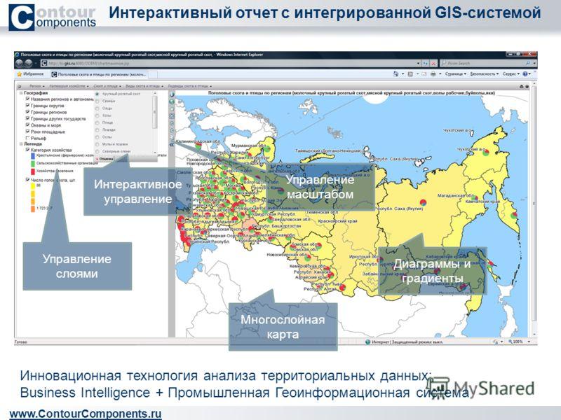 Интерактивный отчет с интегрированной GIS-системой www.ContourComponents.ru Управление слоями Многослойная карта Управление масштабом Интерактивное управление Диаграммы и градиенты Инновационная технология анализа территориальных данных: Business Int