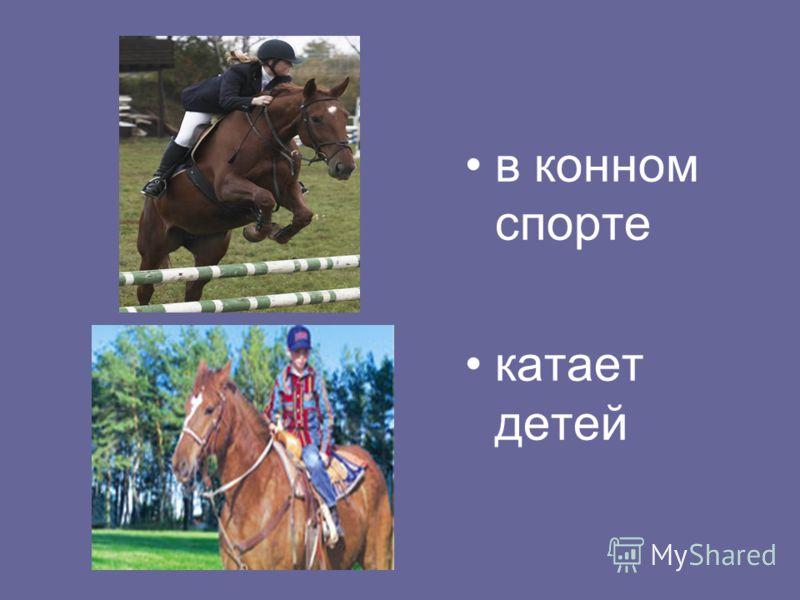 в конном спорте катает детей