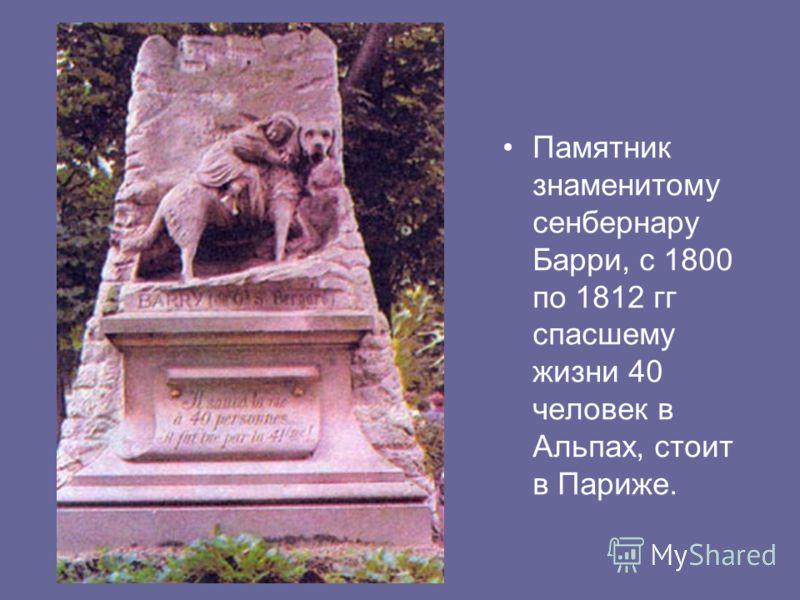 Памятник знаменитому сенбернару Барри, с 1800 по 1812 гг спасшему жизни 40 человек в Альпах, стоит в Париже.
