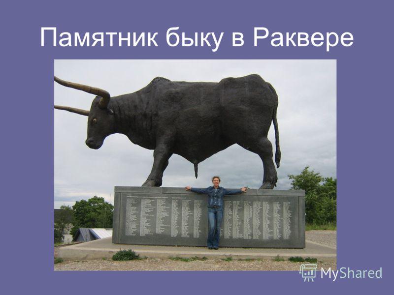 Памятник быку в Раквере
