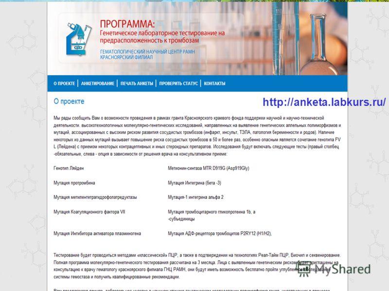 http://anketa.labkurs.ru/