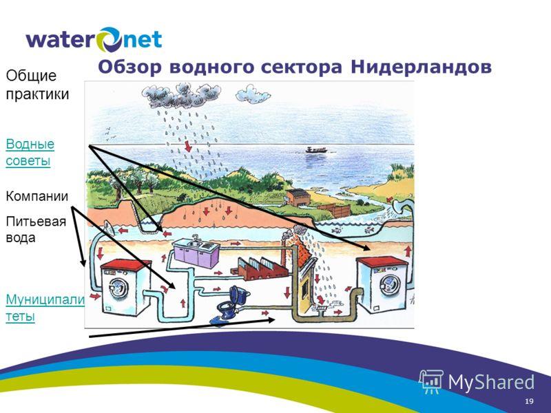 19 Обзор водного сектора Нидерландов Компании Питьевая вода Водные советы Муниципали теты Общие практики