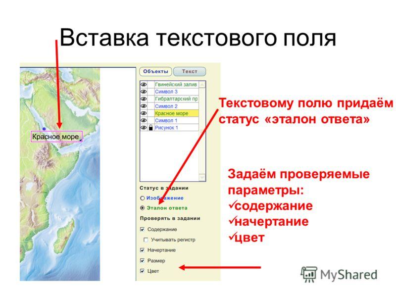Вставка текстового поля Текстовому полю придаём статус «эталон ответа» Задаём проверяемые параметры: содержание начертание цвет