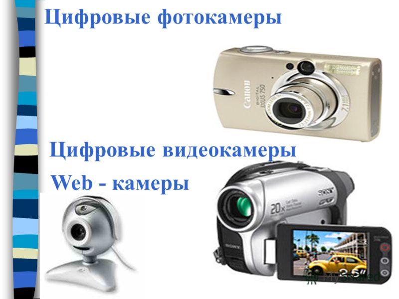 Цифровые фотокамеры Цифровые видеокамеры Web - камеры