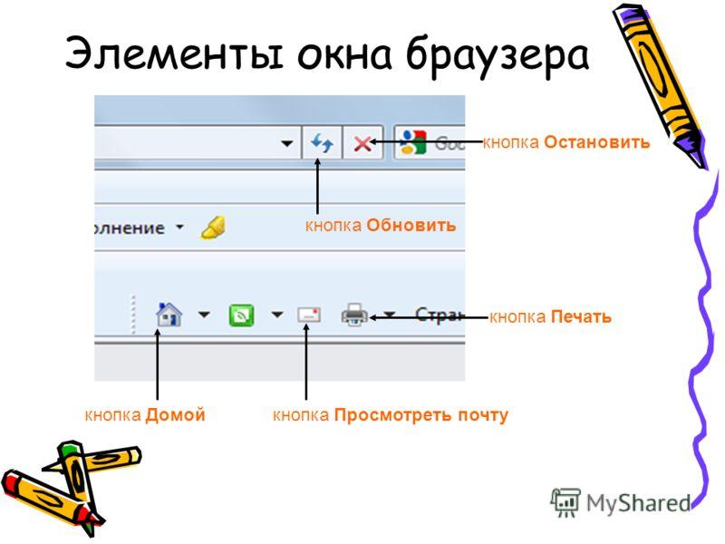 Элементы окна браузера кнопка Остановить кнопка Обновить кнопка Домойкнопка Просмотреть почту кнопка Печать