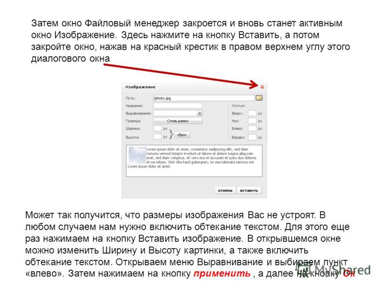 Затем окно Файловый менеджер закроется и вновь станет активным окно Изображение. Здесь нажмите на кнопку Вставить, а потом закройте окно, нажав на красный крестик в правом верхнем углу этого диалогового окна Может так получится, что размеры изображен