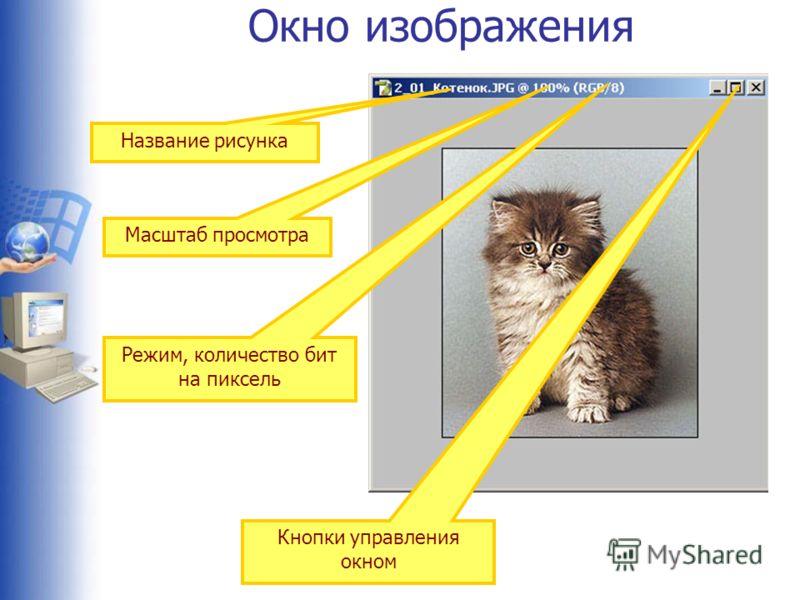 Окно изображения Название рисунка Масштаб просмотра Режим, количество бит на пиксель Кнопки управления окном