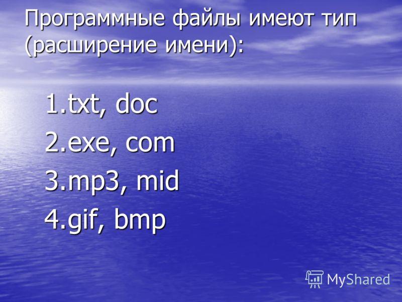 Программные файлы имеют тип (расширение имени): 1.txt, doc 2.exe, com 3.mp3, mid 4.gif, bmp