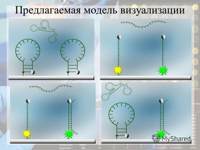 Предлагаемая модель визуализации