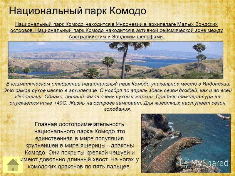 Национальный парк Комодо Главная достопримечательность национального парка Комодо это единственная в мире популяция крупнейшей в мире ящерицы - драконы Комодо. Они покрыты крепкой чешуей и имеют довольно длинный хвост. На ногах у комодских драконов п