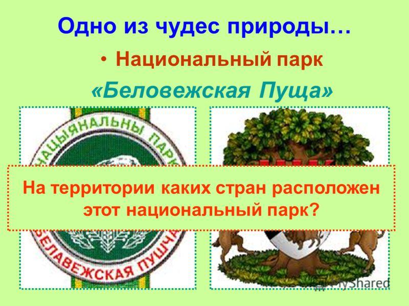 Одно из чудес природы… Национальный парк «Беловежская Пуща» На территории каких стран расположен этот национальный парк?