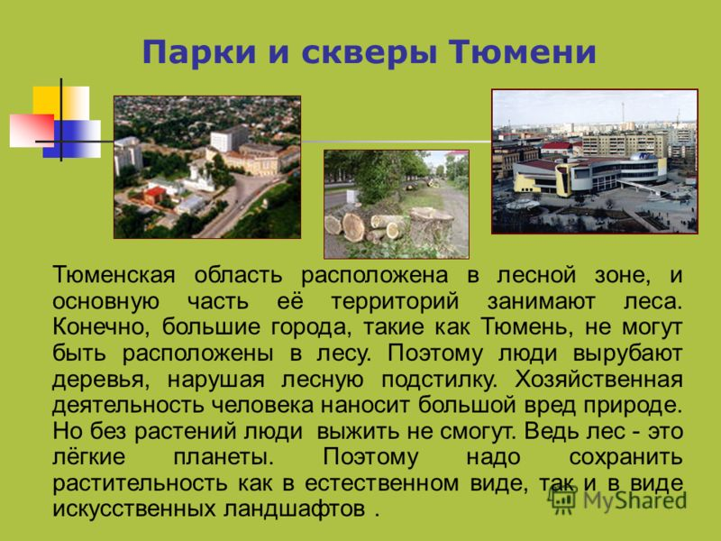 Парки и скверы Тюмени Тюменская область расположена в лесной зоне, и основную часть её территорий занимают леса. Конечно, большие города, такие как Тюмень, не могут быть расположены в лесу. Поэтому люди вырубают деревья, нарушая лесную подстилку. Хоз