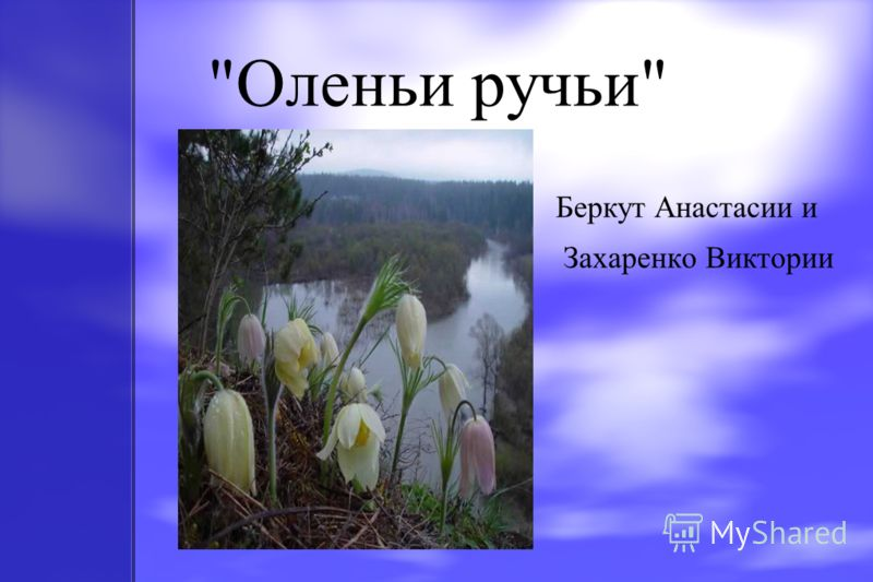 Оленьи ручьи Беркут Анастасии и Захаренко Виктории