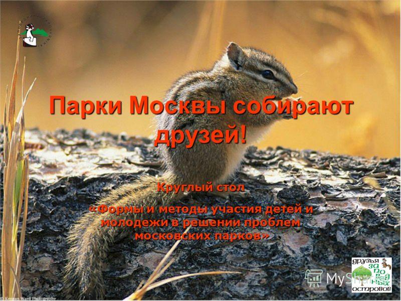 Парки Москвы собирают друзей! Круглый стол «Формы и методы участия детей и молодежи в решении проблем московских парков» московских парков»
