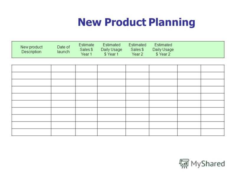 New Product Planning New product Description Date of launch Estimate Sales $ Year 1 Estimated Daily Usage $ Year 1 Estimated Sales $ Year 2 Estimated Daily Usage $ Year 2