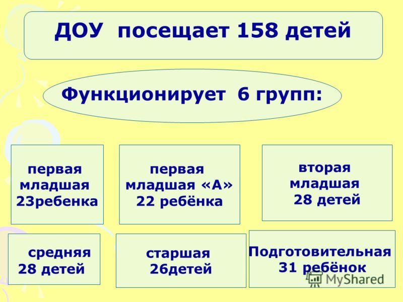Первая младшая «А», вторая младшая, средняя, старшая, подготовительная к школе группа.Первая младшая «А», вторая младшая, средняя, старшая, подготовительная к школе группа. ДОУ посещает 158 детей Функционирует 6 групп: первая младшая 23ребенка первая