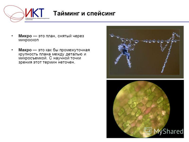 6 Тайминг и спейсинг Микро это план, снятый через микроскоп Макро это как бы промежуточная крупность плана между деталью и микросъемкой. С научной точки зрения этот термин неточен.
