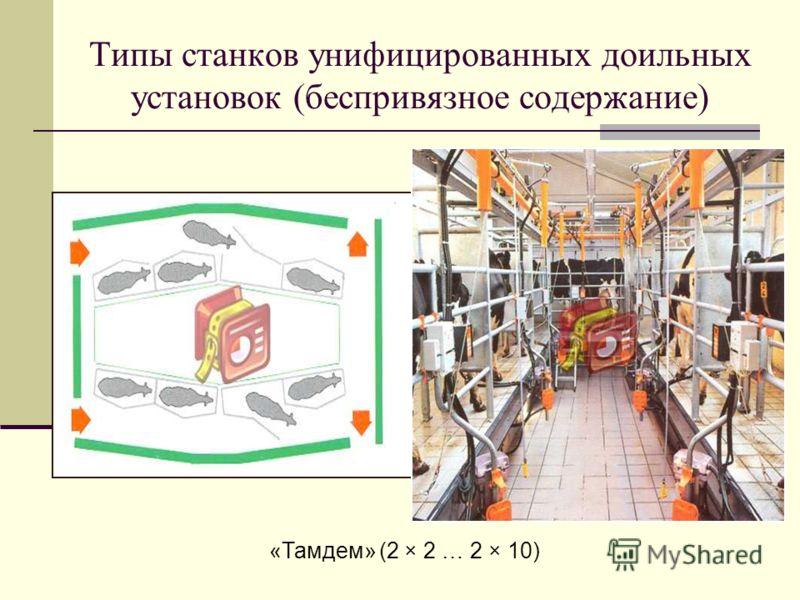 Типы станков унифицированных доильных установок (беспривязное содержание) «Тамдем» (2 × 2 … 2 × 10)