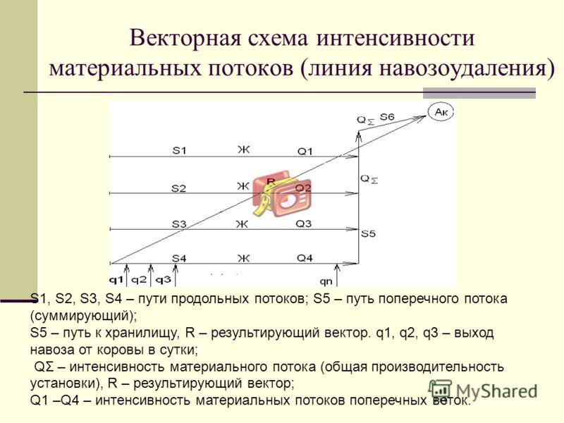 Векторная схема интенсивности материальных потоков (линия навозоудаления) S1, S2, S3, S4 – пути продольных потоков; S5 – путь поперечного потока (суммирующий); S5 – путь к хранилищу, R – результирующий вектор. q1, q2, q3 – выход навоза от коровы в су