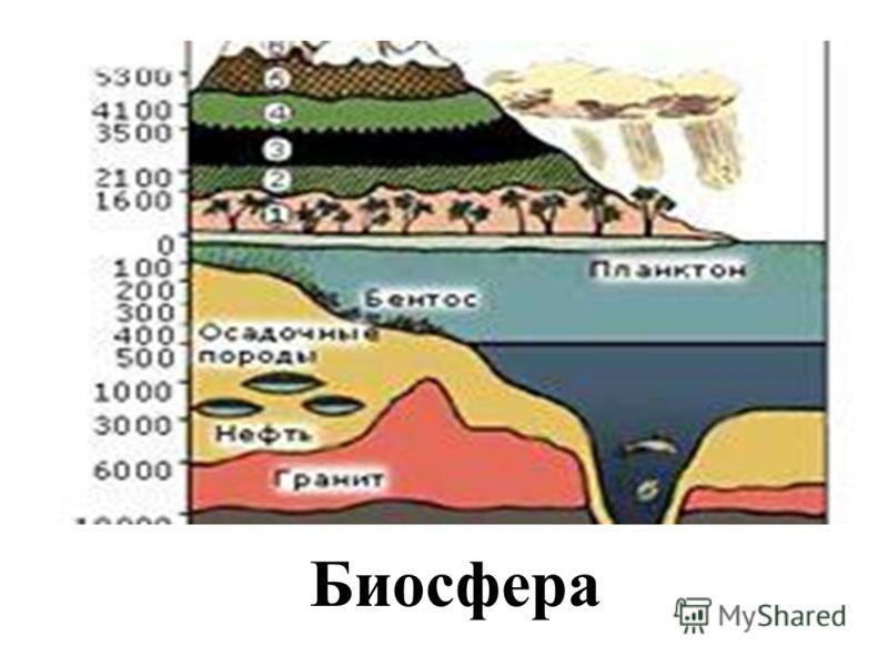 В. И. Вернадский создатель учения о биосфере