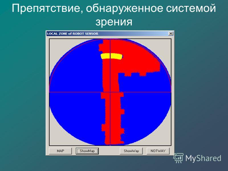 Препятствие, обнаруженное системой зрения