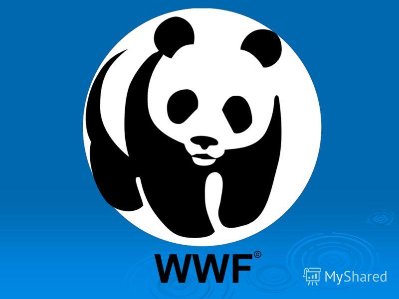WWF ©