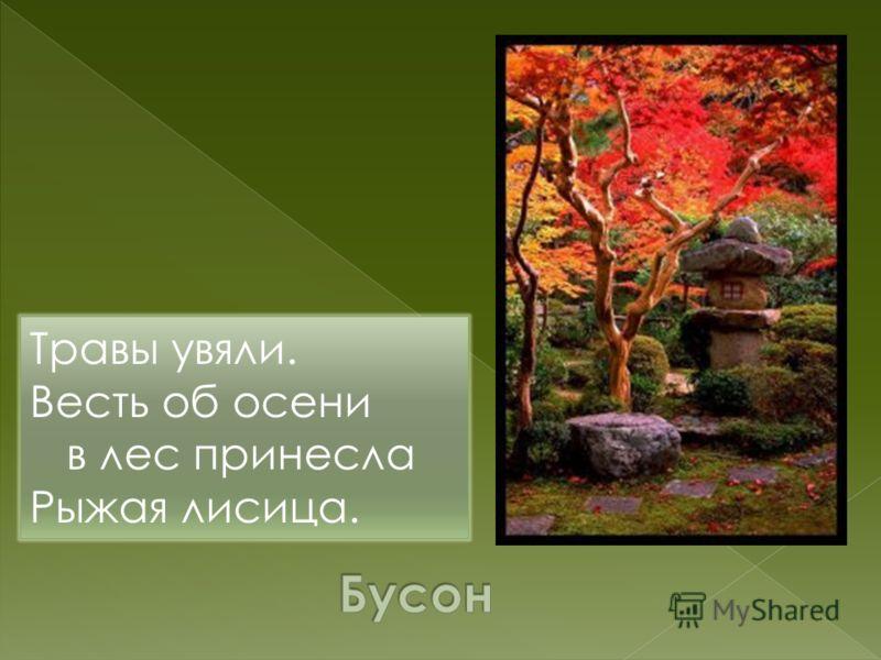 Травы увяли. Весть об осени в лес принесла Рыжая лисица.