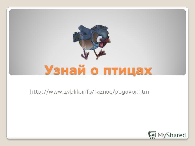 Узнай о птицах http://www.zyblik.info/raznoe/pogovor.htm