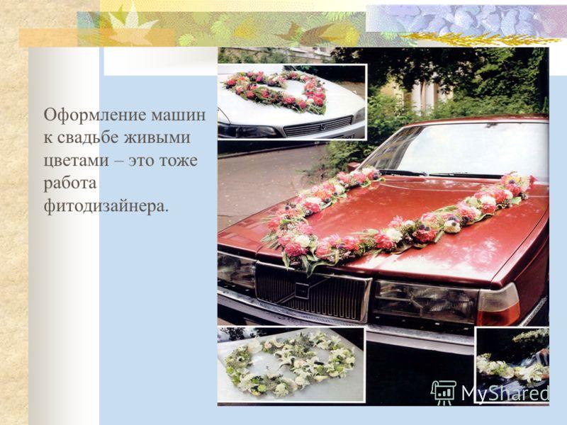 Оформление машин к свадьбе живыми цветами – это тоже работа фитодизайнера.