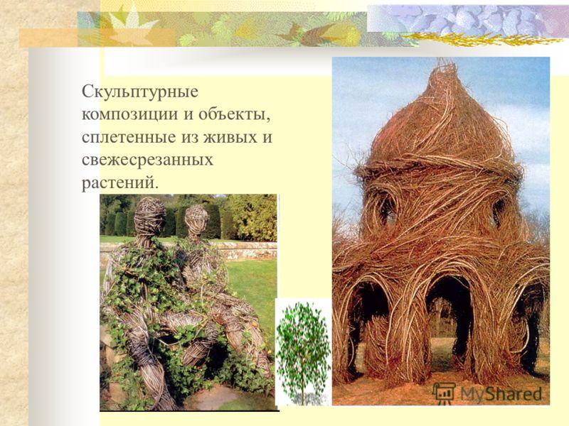 Скульптурные композиции и объекты, сплетенные из живых и свежесрезанных растений.