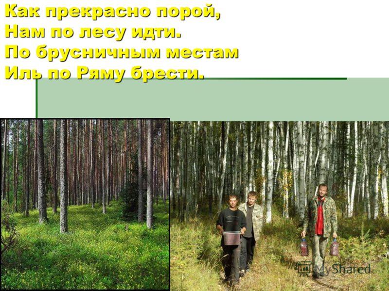 Как прекрасно порой,Нам по лесу идти.По брусничным местамИль по Ряму брести.