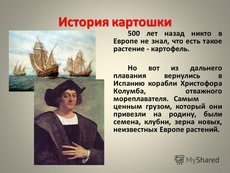 История картошки 500 лет назад никто в Европе не знал, что есть такое растение - картофель. Но вот из дальнего плавания вернулись в Испанию корабли Христофора Колумба, отважного мореплавателя. Самым ценным грузом, который они привезли на родину, были
