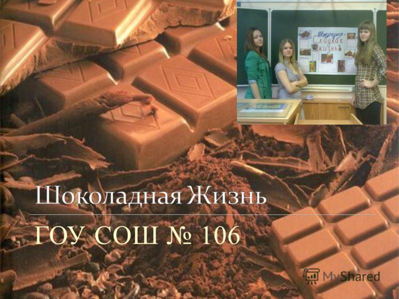 ГОУ СОШ 106