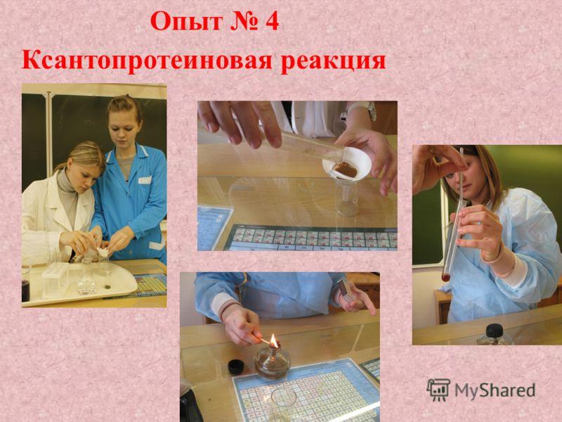Опыт 4 Ксантопротеиновая реакция