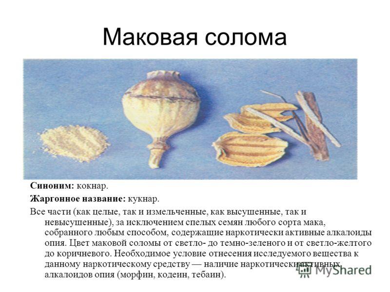 Маковая солома Синоним: кокнар. Жаргонное название: кукнар. Все части (как целые, так и измельченные, как высушенные, так и невысушенные), за исключением спелых семян любого сорта мака, собранного любым способом, содержащие наркотически активные ал