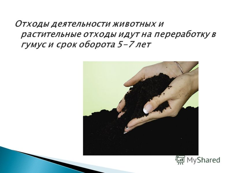 Отходы деятельности животных и растительные отходы идут на переработку в гумус и срок оборота 5-7 лет