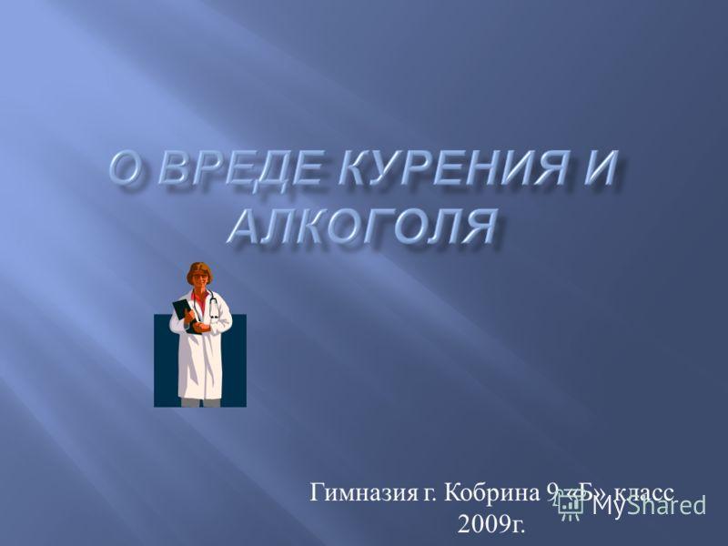 Гимназия г. Кобрина 9 « Б » класс 2009 г.