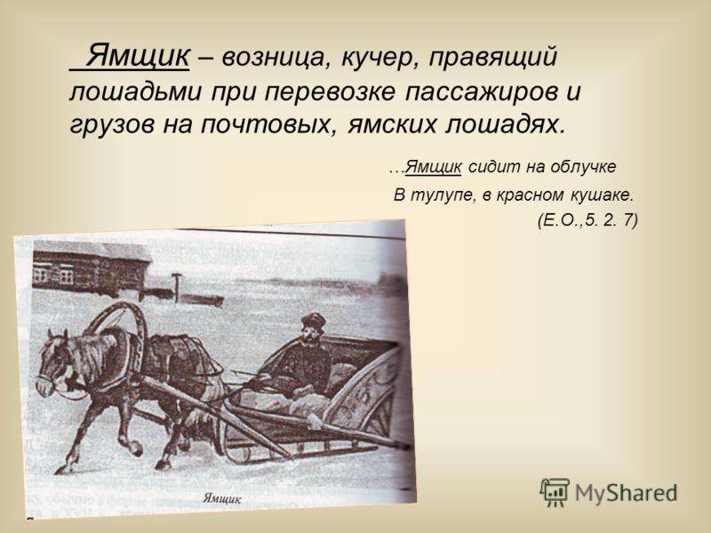 Ямщик – возница, кучер, правящий лошадьми при перевозке пассажиров и грузов на почтовых, ямских лошадях. …Ямщик сидит на облучке В тулупе, в красном кушаке. (Е.О.,5. 2. 7)