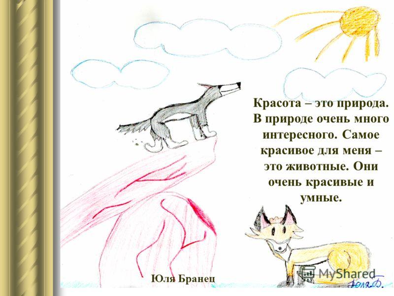 Красота – это природа. В природе очень много интересного. Самое красивое для меня – это животные. Они очень красивые и умные. Юля Бранец
