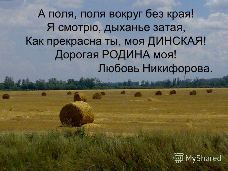 А поля, поля вокруг без края! Я смотрю, дыханье затая, Как прекрасна ты, моя ДИНСКАЯ! Дорогая РОДИНА моя! Любовь Никифорова.