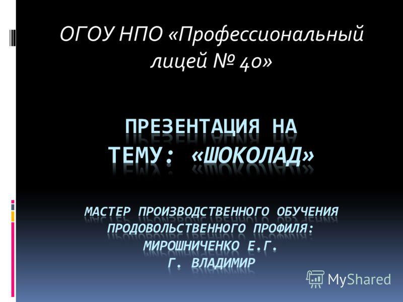 ОГОУ НПО «Профессиональныйлицей 40»