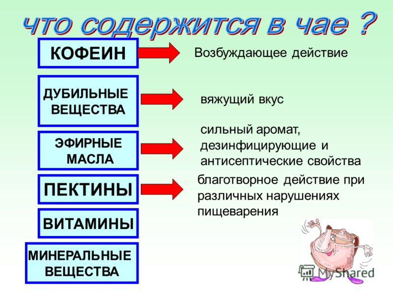 КОФЕИН ДУБИЛЬНЫЕ ВЕЩЕСТВА ЭФИРНЫЕ МАСЛА ПЕКТИНЫ ВИТАМИНЫ МИНЕРАЛЬНЫЕ ВЕЩЕСТВА Возбуждающее действие вяжущий вкус сильный аромат, дезинфицирующие и антисептические свойства благотворное действие при различных нарушениях пищеварения