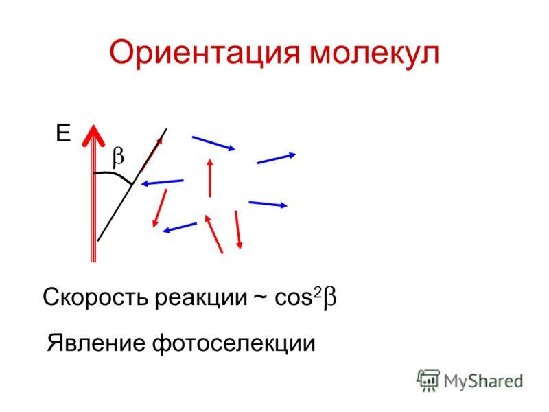 Ориентация молекул E Скорость реакции ~ cos 2 Явление фотоселекции