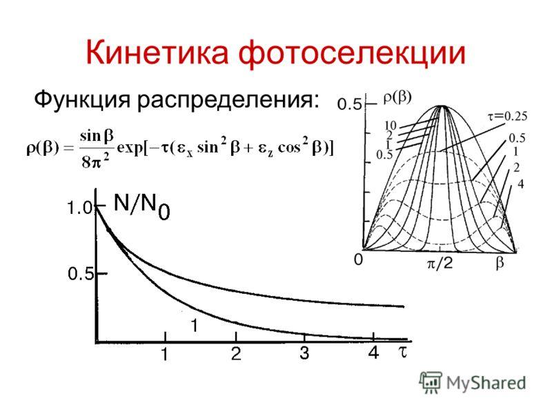 Кинетика фотоселекции Функция распределения: