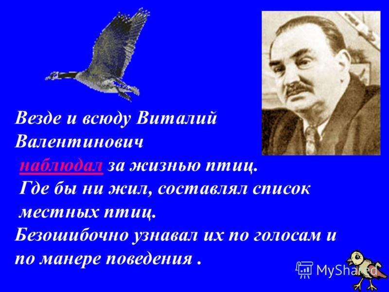 Везде и всюду Виталий Валентинович наблюдал за жизнью птиц. Где бы ни жил, составлял список местных птиц. Безошибочно узнавал их по голосам и по манере поведения.