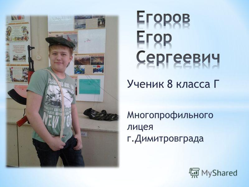 Ученик 8 класса Г Многопрофильного лицея г.Димитровграда