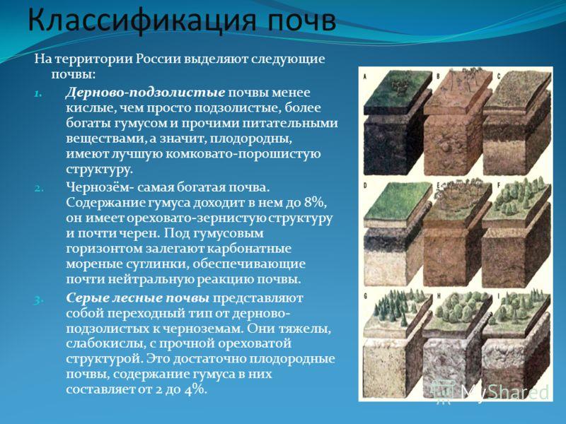 Классификация почв На территории России выделяют следующие почвы: 1. Дерново-подзолистые почвы менее кислые, чем просто подзолистые, более богаты гумусом и прочими питательными веществами, а значит, плодородны, имеют лучшую комковато-порошистую струк